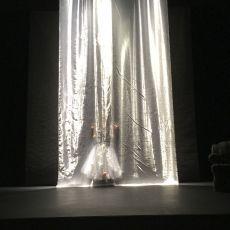 amontaine behind veil.jpg